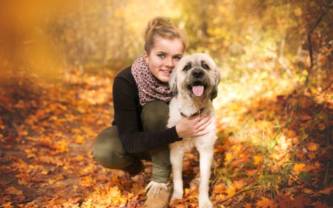 Berufsbild Heilkräuter-, Vitalpilz- und Aromaölberater-Berater für Hunde