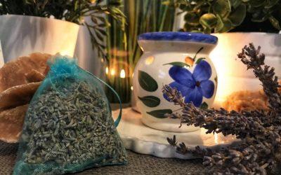 Aromaöle für den Hund im Winter – eine kleine Hausapotheke