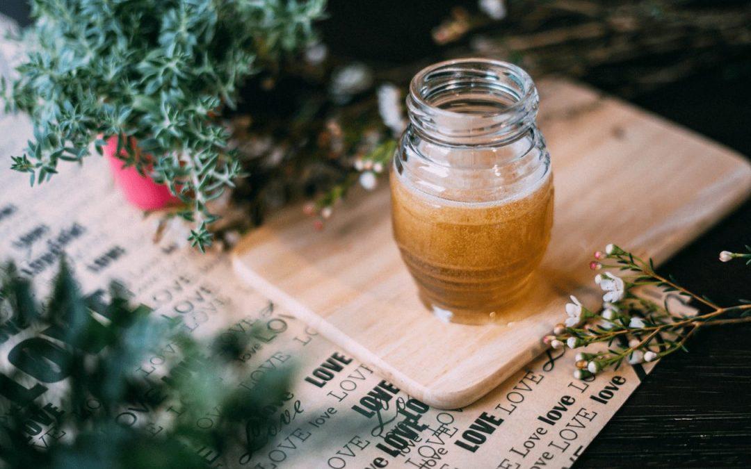 Honig für Hunde: Rezepte und Tipps