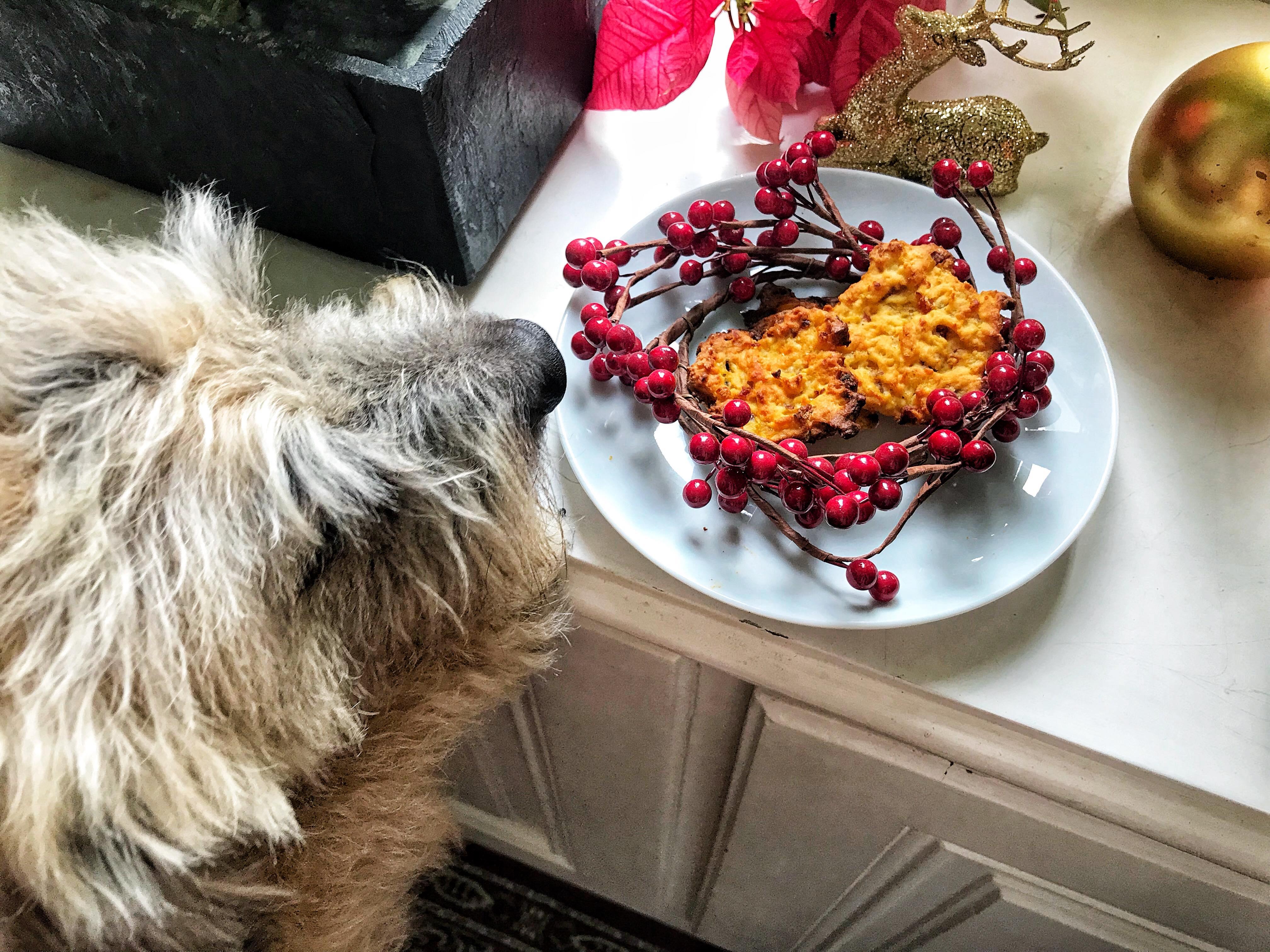 Weihnachtliche Keksrezepte für Hunde