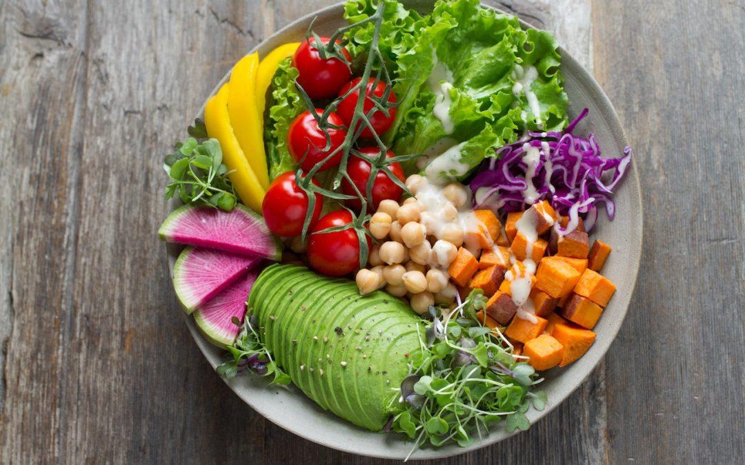 Hund vegetarisch oder vegan ernähren: ja oder nein?