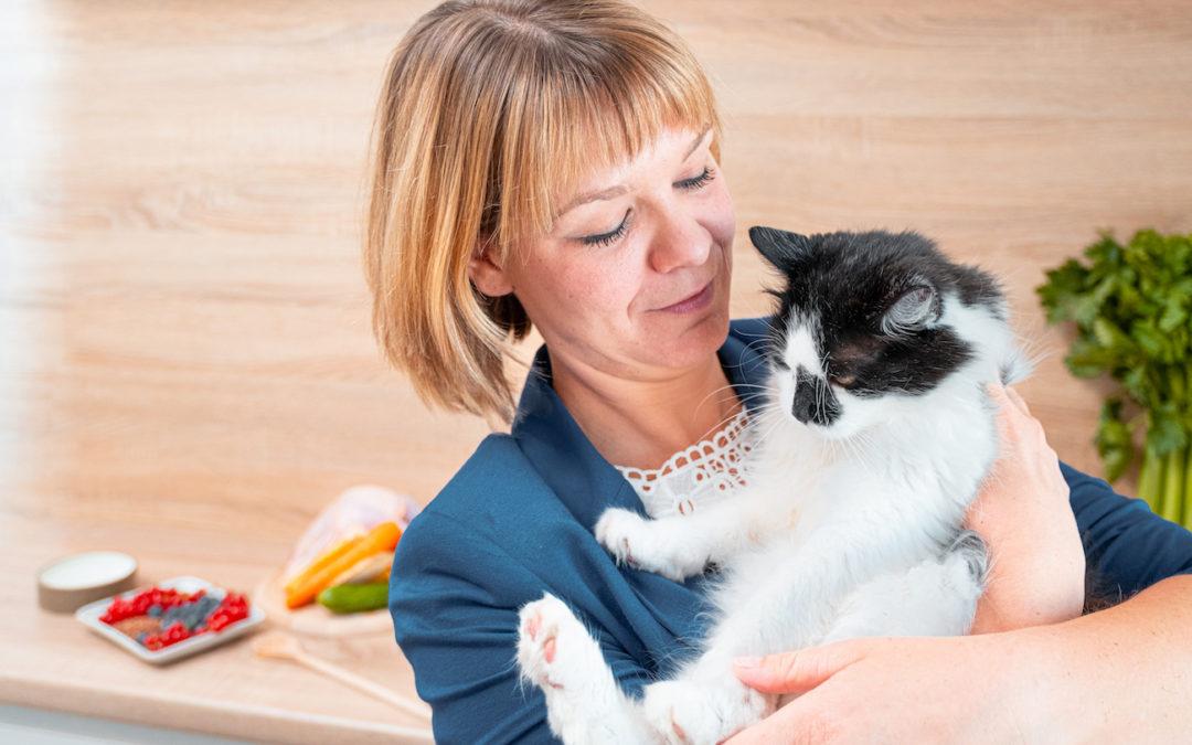 Ernährungsberatung für die Katze: Warum es sich lohnt, mit alten Mustern zu brechen