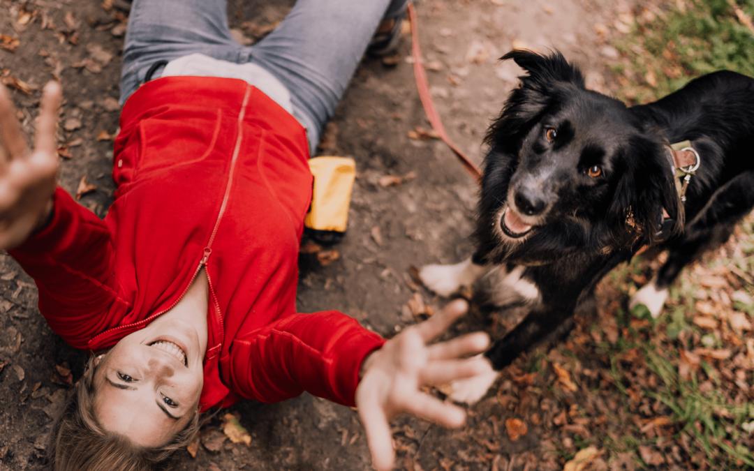 Warum nicht jede/r HundetrainerIn auch gut ist